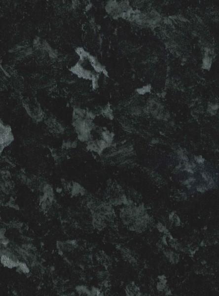 negra labrador (Copiar)