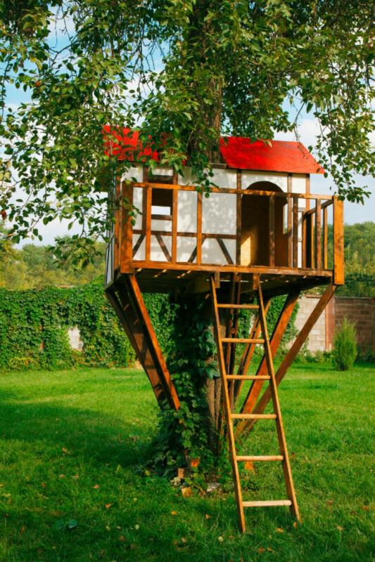 cabaña para árboles