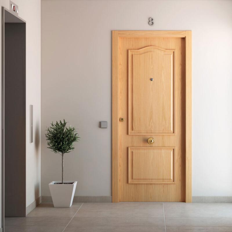Puerta de entrada maciza